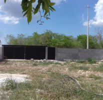 Foto de terreno habitacional en venta en, dzitya, mérida, yucatán, 2060514 no 01
