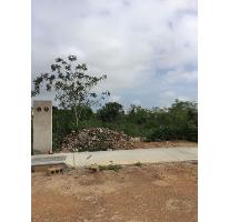 Foto de casa en venta en  , dzitya, mérida, yucatán, 2093226 No. 01