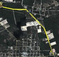 Foto de terreno comercial en venta en  , dzitya, mérida, yucatán, 2272395 No. 01