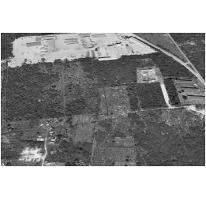 Foto de terreno habitacional en venta en  , dzitya, mérida, yucatán, 2280578 No. 01