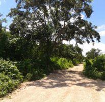 Foto de terreno habitacional en venta en, dzitya, mérida, yucatán, 2331875 no 01