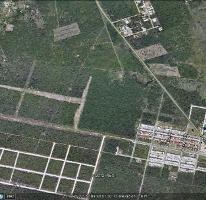 Foto de terreno habitacional en venta en, dzitya, mérida, yucatán, 2337024 no 01