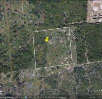 Foto de terreno habitacional en venta en, dzitya, mérida, yucatán, 2348998 no 01
