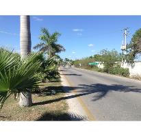 Foto de terreno habitacional en venta en  , dzitya, mérida, yucatán, 2552741 No. 01