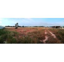 Foto de terreno habitacional en venta en  , dzitya, mérida, yucatán, 2838184 No. 01