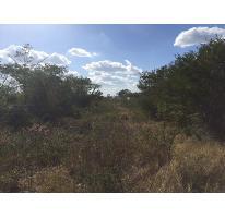 Foto de terreno habitacional en venta en  , dzitya, mérida, yucatán, 2958628 No. 01
