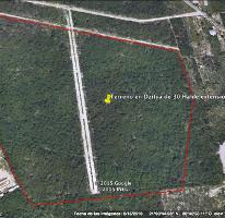 Foto de terreno habitacional en venta en  , dzitya, mérida, yucatán, 2992853 No. 01