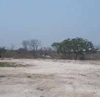 Foto de terreno habitacional en venta en  , dzitya, mérida, yucatán, 3269719 No. 01