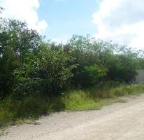 Foto de terreno habitacional en venta en  , dzitya, mérida, yucatán, 3425708 No. 01