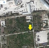 Foto de terreno habitacional en venta en  , dzitya, mérida, yucatán, 3738473 No. 01