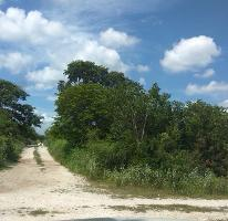 Foto de terreno habitacional en venta en  , dzitya, mérida, yucatán, 3874760 No. 01