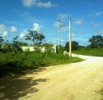 Foto de terreno habitacional en venta en  , dzitya, mérida, yucatán, 3925274 No. 01