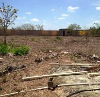 Foto de terreno habitacional en venta en  , dzitya, mérida, yucatán, 4280036 No. 01