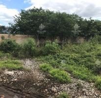Foto de terreno habitacional en venta en  , dzitya, mérida, yucatán, 4336734 No. 01