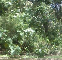 Foto de terreno habitacional en venta en El Arenal, El Arenal, Jalisco, 2582991,  no 01