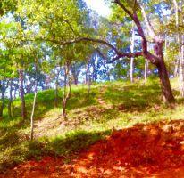 Foto de terreno habitacional en venta en El Tuito, Cabo Corrientes, Jalisco, 2368223,  no 01