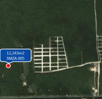 Propiedad similar 2326900 en Tulum Centro.