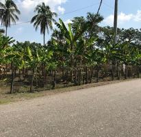 Foto de terreno habitacional en venta en ej guineo 0, ixtacomitan 3a sección, centro, tabasco, 4203251 No. 01