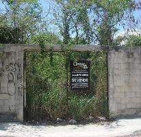 Foto de terreno habitacional en venta en  , ejidal, solidaridad, quintana roo, 4033526 No. 01