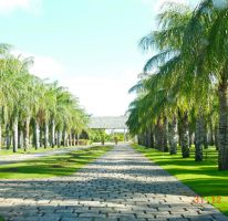 Foto de terreno habitacional en venta en, ejido de chuburna, mérida, yucatán, 1557786 no 01