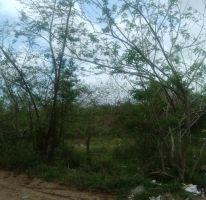 Foto de terreno habitacional en venta en ejido villas de altamira, vega de esteros, altamira, tamaulipas, 2202926 no 01