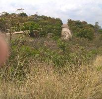 Foto de terreno habitacional en venta en  , el arenal, el arenal, jalisco, 2001815 No. 01