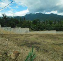 Foto de terreno habitacional en venta en el chamizal, san pablo etla, san pablo etla, oaxaca, 1569672 no 01