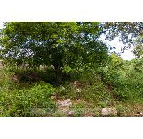 Foto de terreno habitacional en venta en  , el cielo, solidaridad, quintana roo, 2728311 No. 01