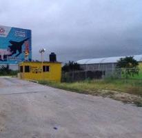Foto de terreno habitacional en venta en el limón 0, berriozabal centro, berriozábal, chiapas, 0 No. 01
