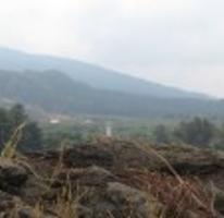 Foto de terreno habitacional en venta en, el mirador, uruapan, michoacán de ocampo, 1286723 no 01