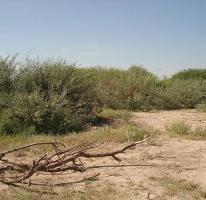 Foto de terreno habitacional en venta en  , el olivo, matamoros, coahuila de zaragoza, 1498711 No. 01