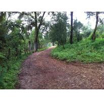 Foto de terreno habitacional en venta en  0, cuadrilla de dolores, valle de bravo, méxico, 2649467 No. 01