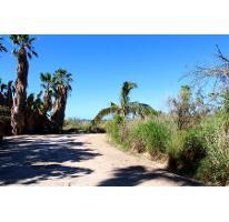 Foto de terreno habitacional en venta en  , el pescadero, la paz, baja california sur, 2592254 No. 01