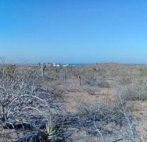 Foto de terreno habitacional en venta en  , el pescadero, la paz, baja california sur, 0 No. 01