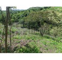 Foto de terreno habitacional en venta en  , el pichón, tepic, nayarit, 2618810 No. 01
