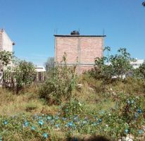Foto de terreno habitacional en venta en, el poder, villagrán, guanajuato, 1857198 no 01