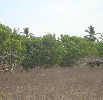 Foto de terreno habitacional en venta en  , el podrido, acapulco de juárez, guerrero, 1073983 No. 01