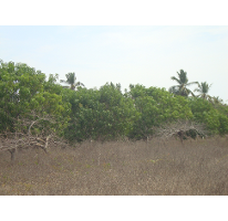Foto de terreno habitacional en venta en, el podrido, acapulco de juárez, guerrero, 1073983 no 01