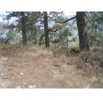 Foto de terreno habitacional en venta en  , el refugio, arteaga, coahuila de zaragoza, 2287088 No. 01