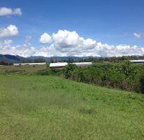 Foto de terreno comercial en venta en el refugio, ixtapan de la sal, ixtapan de la sal, estado de méxico, 2029312 no 01