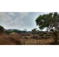 Foto de terreno comercial en venta en  , el sabino, marcos castellanos, michoacán de ocampo, 2258073 No. 01