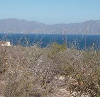 Foto de terreno habitacional en venta en, el sargento, la paz, baja california sur, 1068265 no 01