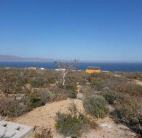 Foto de terreno habitacional en venta en, el sargento, la paz, baja california sur, 1469871 no 01