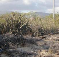 Foto de terreno habitacional en venta en  , el sargento, la paz, baja california sur, 2623555 No. 01