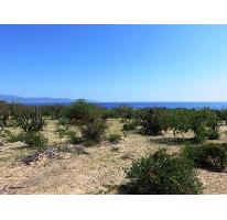 Foto de terreno habitacional en venta en  , el sargento, la paz, baja california sur, 2628380 No. 01