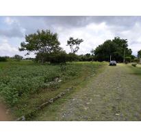 Foto de terreno habitacional en venta en  , el venadito, ayala, morelos, 1304483 No. 01