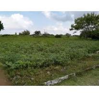 Foto de terreno habitacional en venta en, el venadito, ayala, morelos, 1675238 no 01