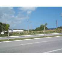 Foto de terreno comercial en renta en  , emiliano zapata, ciudad madero, tamaulipas, 2611444 No. 01