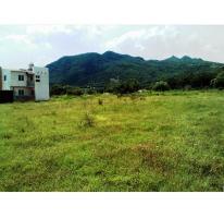 Foto de terreno habitacional en venta en  , emiliano zapata (palo mocho), yautepec, morelos, 1331423 No. 02