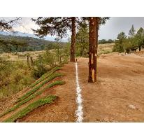 Foto de terreno habitacional en venta en  , espíritu santo, jilotzingo, méxico, 2935762 No. 01